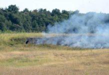 Пожарите в Новозагорско започнаха още в началото на жътвата. Снимка: БНР